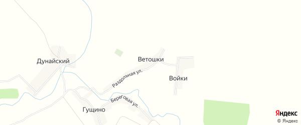 Карта деревни Ветошки в Брянской области с улицами и номерами домов