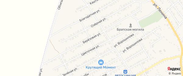 Березовая улица на карте поселка Погара с номерами домов