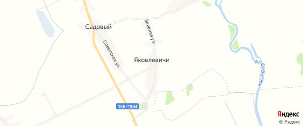 Карта деревни Яковлевичи в Брянской области с улицами и номерами домов