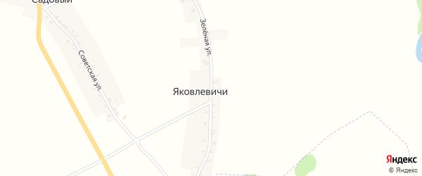 Зеленая улица на карте деревни Яковлевичи с номерами домов
