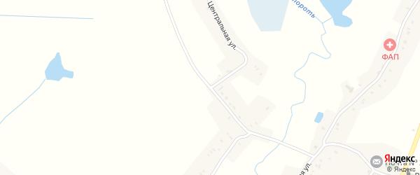 Центральная улица на карте деревни Бульшево с номерами домов