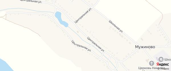 Центральная улица на карте села Мужиново с номерами домов