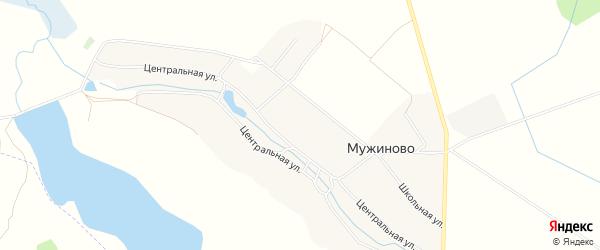 Карта села Мужиново в Брянской области с улицами и номерами домов