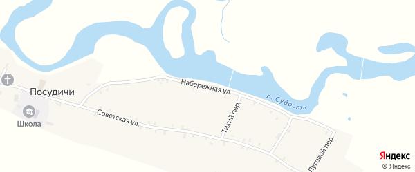 Набережная улица на карте села Посудичи с номерами домов