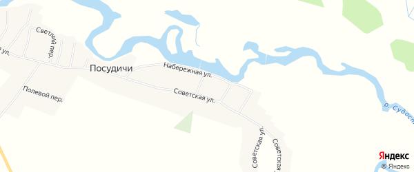 Карта села Посудичи в Брянской области с улицами и номерами домов