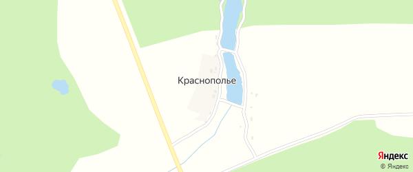 Озерная улица на карте деревни Краснополья с номерами домов