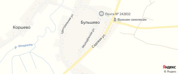 Молодежная улица на карте деревни Бульшево с номерами домов