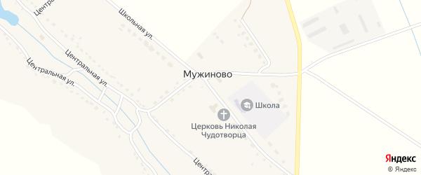 Школьная улица на карте села Мужиново с номерами домов