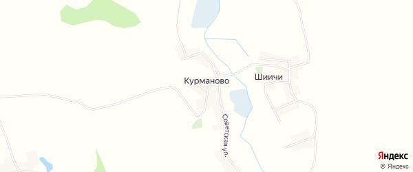 Карта деревни Курманово в Брянской области с улицами и номерами домов
