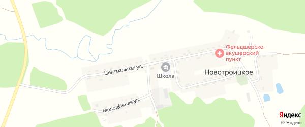 Центральная улица на карте деревни Новотроицкого с номерами домов
