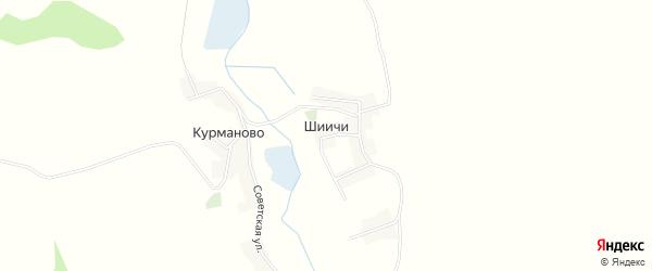 Карта деревни Шиичей в Брянской области с улицами и номерами домов