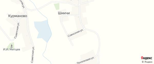 Совхозная улица на карте деревни Шиичей с номерами домов