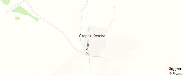 Карта деревни Старая Кочева в Брянской области с улицами и номерами домов