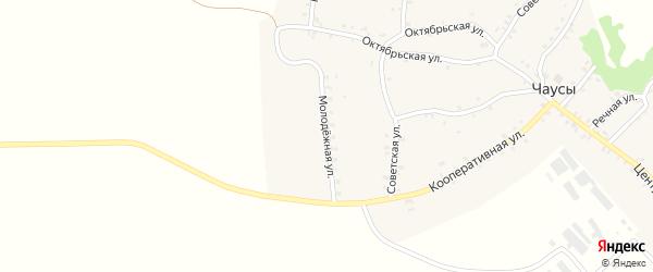 Молодежная улица на карте села Чаус с номерами домов
