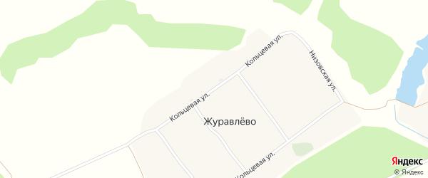 Кольцевая улица на карте деревни Журавлево с номерами домов