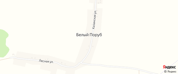 Лесная улица на карте поселка Белого Поруба с номерами домов