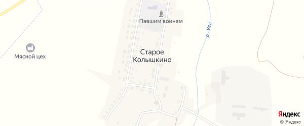 Центральная улица на карте деревни Старое Колышкино с номерами домов