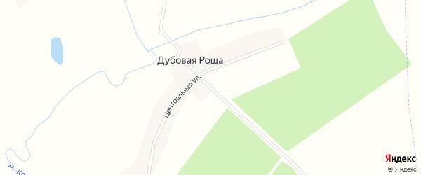 Центральная улица на карте поселка Дубовой Рощи с номерами домов