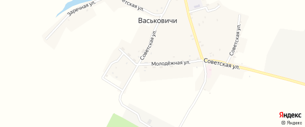 Молодежная улица на карте села Васьковичи с номерами домов