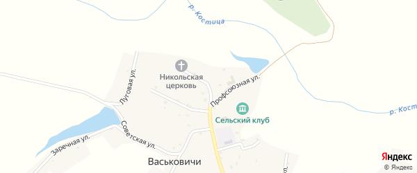 Профсоюзная улица на карте села Васьковичи с номерами домов