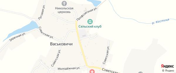 Садовая улица на карте села Васьковичи с номерами домов