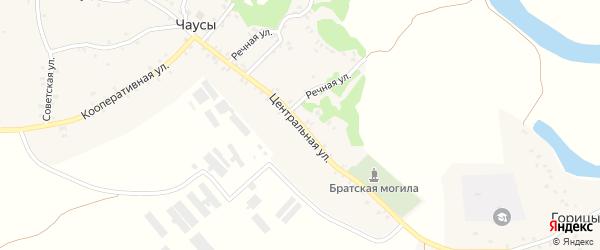 Центральная улица на карте села Чаус с номерами домов