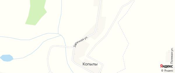 Заречная улица на карте деревни Копылы с номерами домов