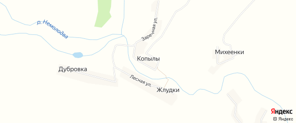 Карта деревни Копылы в Брянской области с улицами и номерами домов