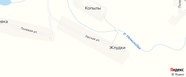 Лесная улица на карте деревни Жлудки с номерами домов