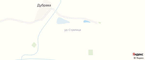 Лесная улица на карте поселка Стрелицы с номерами домов