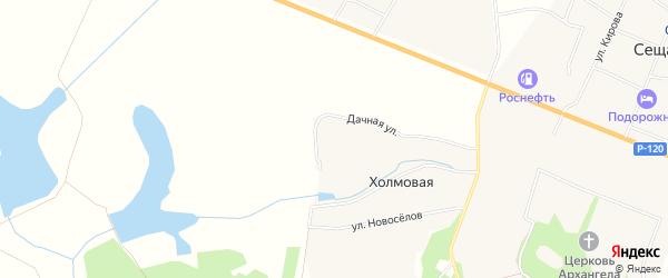 Карта Холмовой деревни в Брянской области с улицами и номерами домов