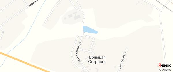 Молодежный переулок на карте деревни Большей Островни с номерами домов