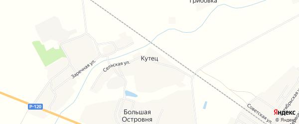 Карта деревни Большей Островни в Брянской области с улицами и номерами домов