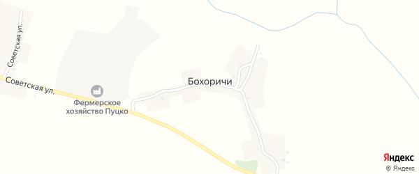 Колхозная улица на карте деревни Бохоричей с номерами домов