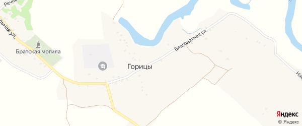 Благодатная улица на карте деревни Горицы с номерами домов