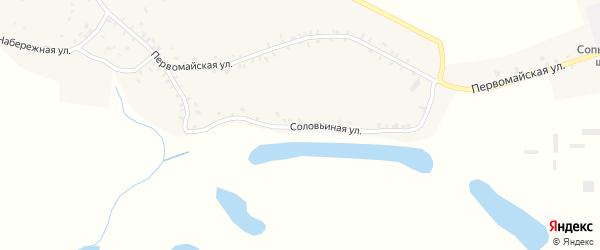 Луговая улица на карте села Сопычи с номерами домов
