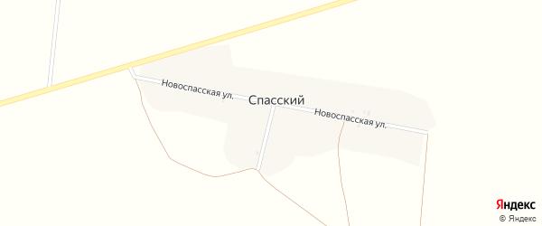 Новоспасская улица на карте Спасского поселка с номерами домов