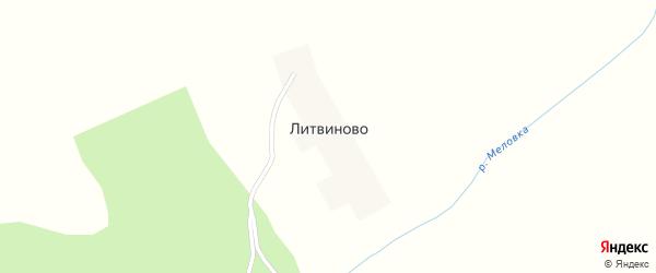Лесная улица на карте деревни Литвиново с номерами домов