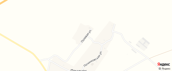 Полевая улица на карте деревни Починка с номерами домов