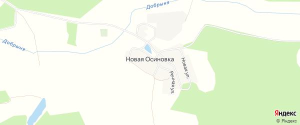 Карта деревни Новой Осиновки в Брянской области с улицами и номерами домов