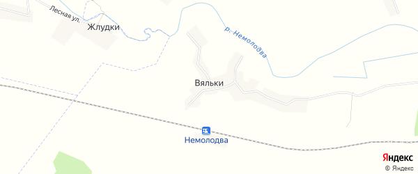 Карта деревни Вяльки в Брянской области с улицами и номерами домов