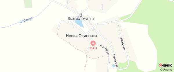 Речная улица на карте деревни Новой Осиновки с номерами домов