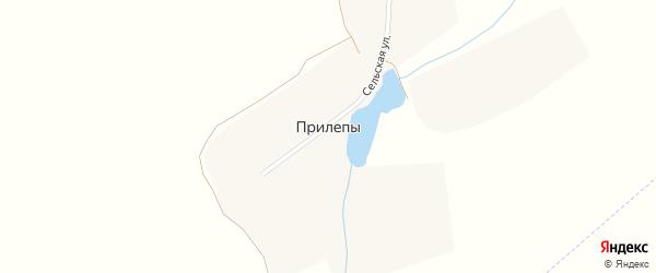 Сельская улица на карте деревни Прилепы с номерами домов