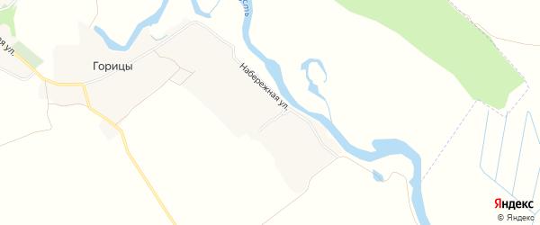 Карта деревни Горицы в Брянской области с улицами и номерами домов