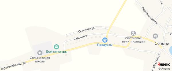 Садовая улица на карте села Сопычи с номерами домов