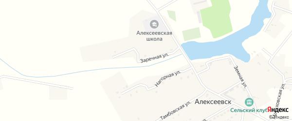 Заречная улица на карте села Алексеевска с номерами домов