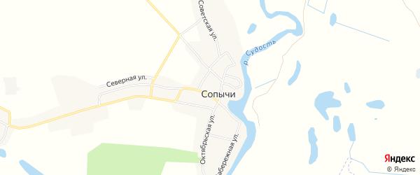 Карта села Сопычи в Брянской области с улицами и номерами домов