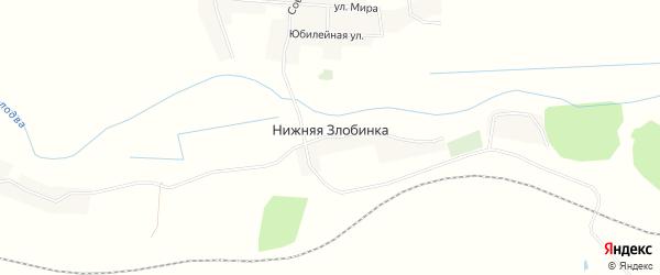 Карта деревни Нижней Злобинки в Брянской области с улицами и номерами домов
