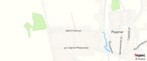 Цветочная улица на карте деревни Радичей с номерами домов