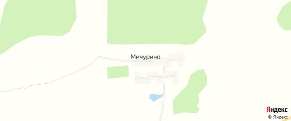 Карта деревни Мичурино в Брянской области с улицами и номерами домов